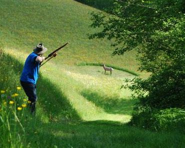 Sportarten für die sich keiner interessiert: Bogenschießen
