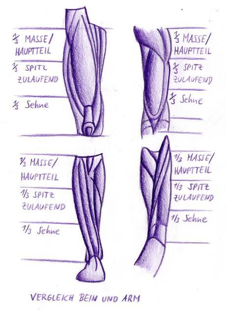 Zeichenkurs: Tutorial – Beine und Knie zeichnen
