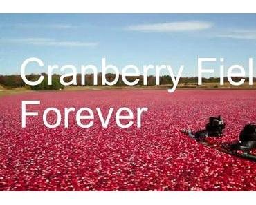 Wakeboarding in a Cranberry World