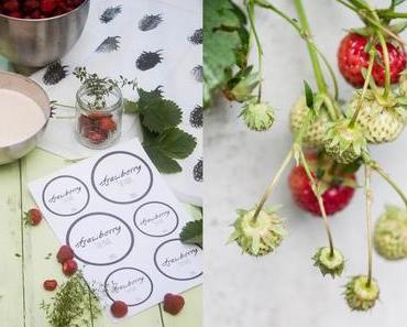 Selbstgemachte Erdbeermarmelade – Strawberry & Thyme