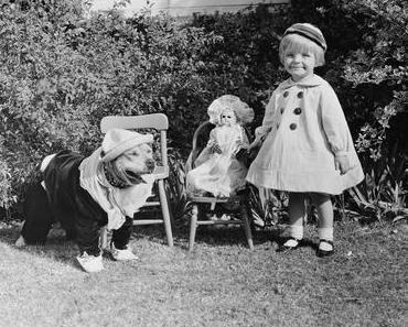 Guter Hund, böser Hund – Die Geschichte der Kampfhunde