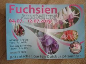 Fuchsienausstellung im Boga Duisburg/Hamborn