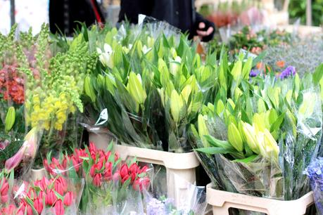 columbia_road_flower_market_10