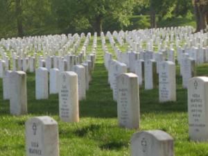Amerika, deine Kinder – Geboren für den Heldentod