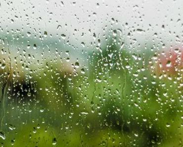 Tag des Regens – der amerikanische Rain Day