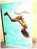 [Rezension] Ein Sommer und vier Tage (Adriana Popescu)