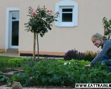 Clean Eating aus dem eigenen Garten – Obst, Gemüse und Salat selbst anbauen