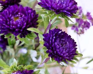 Friday-Flowerday #34/15
