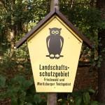 Mit Vogelhaus und Leuchtturm zum Fotoshooting in den Wald