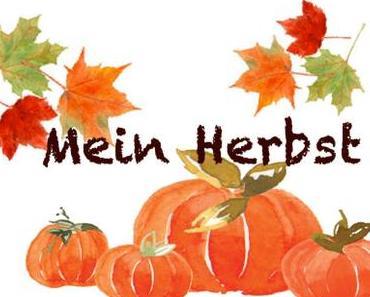 """Blogparade """"Mein Herbst"""": Rote Beete Kuchen"""