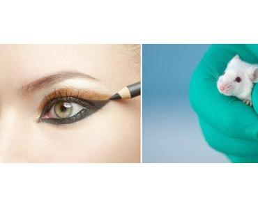 Von Kosmetik und Tierversuchen…