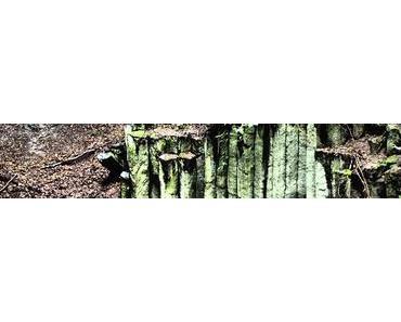 Ausflüge im Westerwald: Rund um Kuchhausen