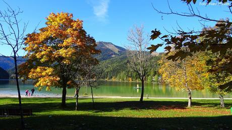 Herbst-Mariazellerland-Johann-Pfeffer_DSC00665-2