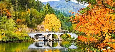 Herbst-Mariazellerland-Johann-Pfeffer_Titel
