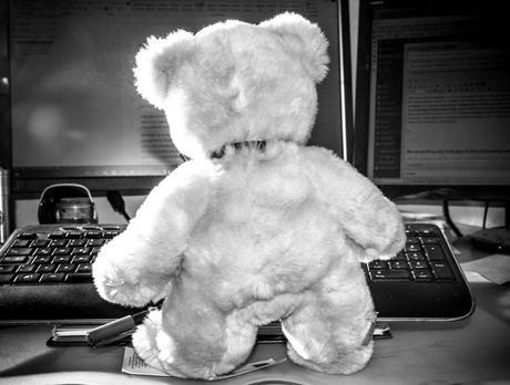 Kuriose Feiertage 14. Oktober -Nimm-Deinen-Teddybär-mit-zur-Arbeit-oder-Schule-Tag (c) 2015 Sven Giese-1