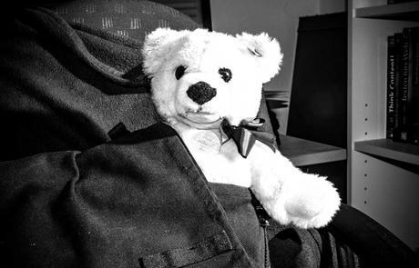 Kuriose Feiertage 14. Oktober -Nimm-Deinen-Teddybär-mit-zur-Arbeit-oder-Schule-Tag (c) 2015  Sven Giese-2