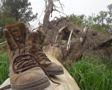Schuh Selfie – Shoe Selfie hoch über der Erde – Reise Fototrend auf Instagram
