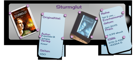 Rezension: Sturmglut