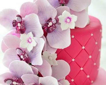 Lila Orchideentorte - Phalaenopsis Orchidee