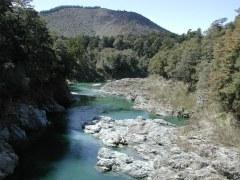Pelorus_River_from_Pelorus_Bridge