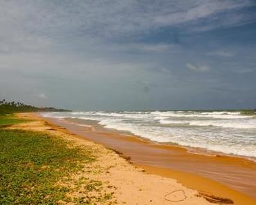 So schön war Bentota: Unser Reisevideo aus Sri Lanka