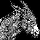 Aventin Blog: Der mit Salz beladene Esel • Fabel von Aesop [del.icio.us]