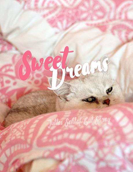Sweet Dreams – Juttas Schlaf Gut Spray | Schwatz Katz