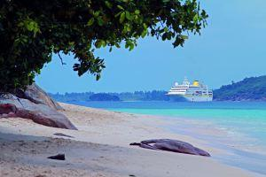 MS Hamburg – Wilde Tiere, Traumstrände und Trendziel Kapstadt: von Malé bis Dakar in 61 Tagen!