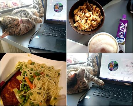 Weekreview | Sunny Sunday #67, katze, food, life, wochenrückblick, josie´s little wonderland, blog