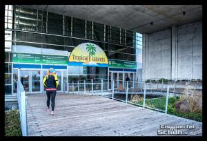 EISWUERFELIMSCHUH - Lauf Tropen Tropical Islands 2015 (8)