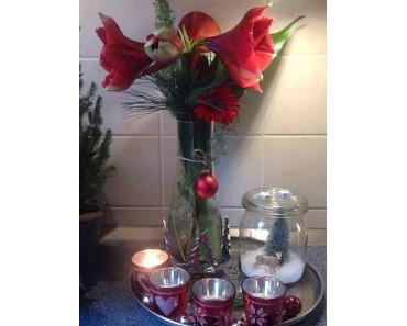 Friday-Flowerday am Samstag – oder – Amaryllis, die Zweite