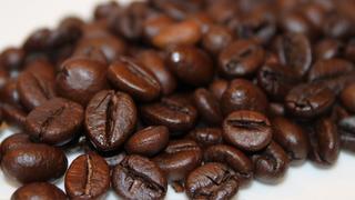 Die Würze des Raren: Meerkatzenkaffee