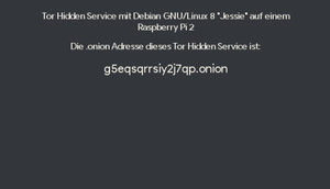 Debian GNU/Linux Hidden Service
