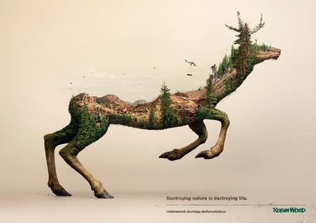 illusion_robin_wood_deer_poster_eng-1800x1273_aotw