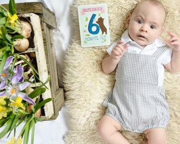 Alltagsgeschichten: 6 Monate Babyglück - Milestonecards