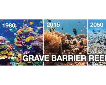 Alarmstufe Rot am Great Barrier Reef, unsere Meere sterben!