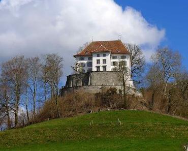 Auferstehung eines Schlosses