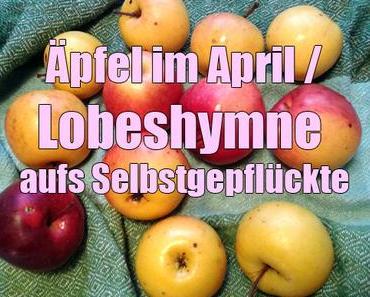Äpfel im April – Lobeshymne aufs Selbstgepflückte
