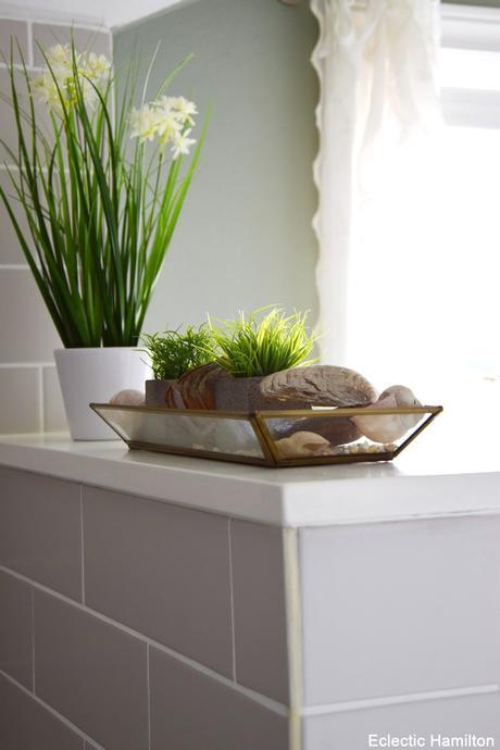 pflanzen f r mein badezimmer und einblicke endlich mal wieder. Black Bedroom Furniture Sets. Home Design Ideas