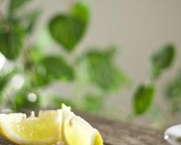 Zitronen-Minz-Pesto