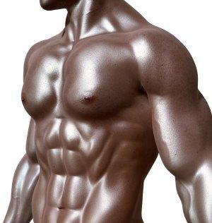 testogen steigert den natürlichen testosteron spiegel