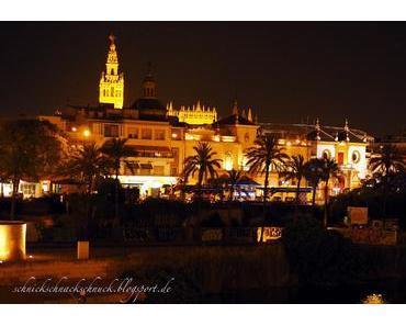 Sevillas Geschichte zwischen Triana und Santa Cruz – historischer Stadtrundgang