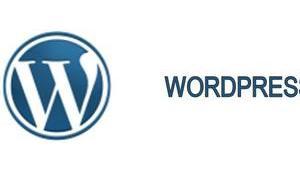 Neue WordPress-Version 4.5.3 Wochenende