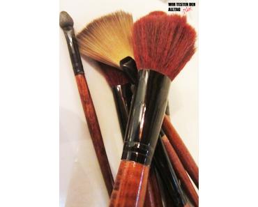 ROSSMANN 'for your Beauty' Pinselshampoo & Reinigungspad