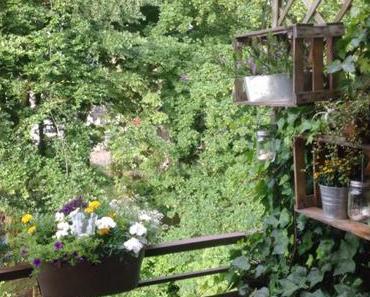"""12tel-Blick im Juni 2016 – oder – Gelb, weiß, blau vor grüner """"Wand"""""""
