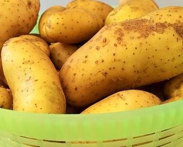 Aus dem eigenen Garten: Ofenkartoffeln und Backofen-Frites