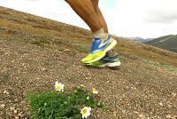 Wann du deine Laufschuhe wechseln solltest