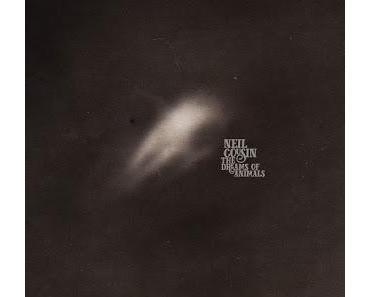 Lauschbilder: Neal Cousin  - Leg Bone Flute