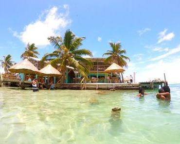 Fragen an Caye Caulker – Haie und die Suche nach dem Strand