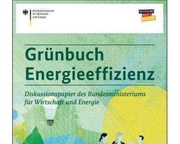 Grünbuch Energieeffizienz braucht konsequente Umsetzung in der Praxis